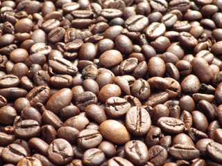 Coffee Bean Background Texture