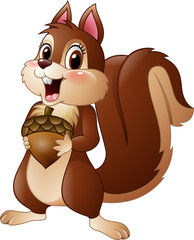 Cartoon funny squirrel holding pine cone