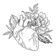 Hand drawn vector illustrations - Human heart with flowers and l