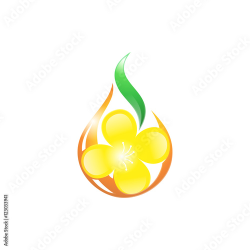 canola flower oil natural logo icon stock image and royalty free