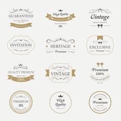 Retro element for calligraphic design. Vintage ornament label.