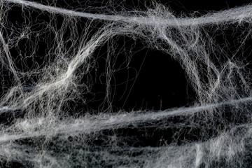 Cobweb against black
