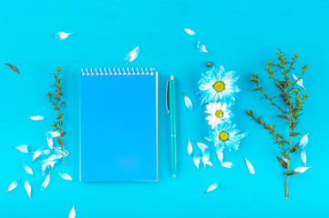 Blue Notepad, blue pen, grass branch, blue chamomile flovers and petals lie flat on a blue background. Flat lay.