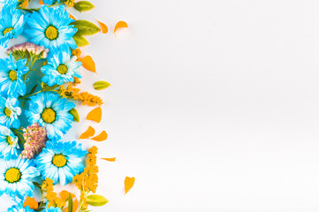 Blue and orange flowers are a straight vertical stripe on a light background. Top view. Flat lay.