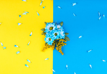 The composition of blue flowers, sprigs of yellow flowers and green leaves. Blue petals on yellow and blue background. Top view. Flat lay.