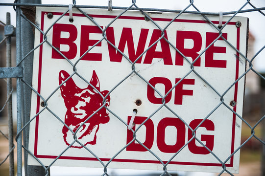 beware of guard dog sign on chain link fence