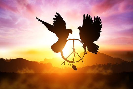 silhouette of pigeon dove holding branch in peace sign shape