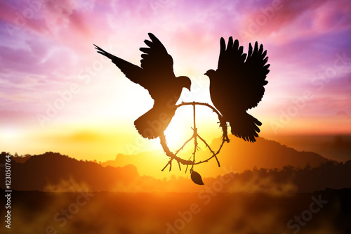 Foto em tela silhouette of pigeon dove holding branch in peace sign shape