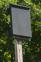 Wooden black painted bat shelter on wooden pole