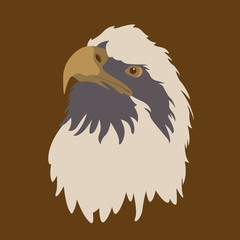 eagle head face vector illustration style Flat
