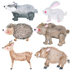 Woodland Animals Set of Watercolor Illustrations Cute Animals Forest