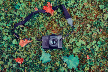 Retro camera on the grass in the autumn park