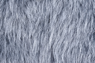 Gray fake fur horizontal. Wolf similar faux fur made of synthetic fibers, designed to resemble fur. Fun fur imitation with long hairs. Macro fabric photography.
