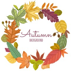 Vector set of autumn leaves round frame