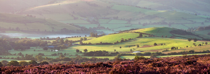 Poster Hill Panoramic View of British Farmland in Sunrise Light