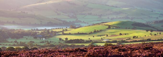 Poster Heuvel Panoramic View of British Farmland in Sunrise Light