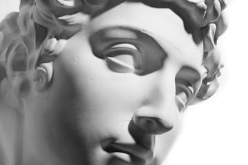 石膏像:メディチ像 顔