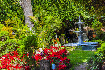 Union Garden Jardin Guanajuato Mexico