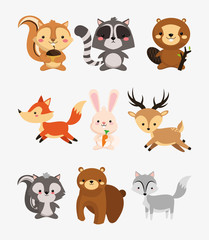fox rabbit deer squirrel raccoon beaver skunk and bear icons image vector illustration design
