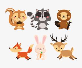 squirrel raccoon beaver fox rabbit and deer icons image vector illustration design