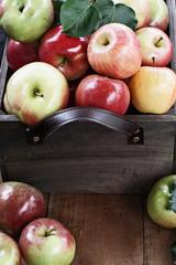 A Bushel of Apples