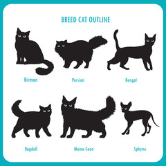Breed Cat Outline Icons. Black And White Vector On A White Background. Bengal, Birman, Persian, Ragdoll, Maine Coon, Sphynx. Best Cat Breed. Breed Cat Pictures. Breed Cat For Sale. Mixed Breed Cat.