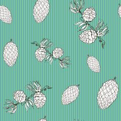 Pine cones hand drawn sketch retro, vintage Seamless Pattern. Vector Illustration.