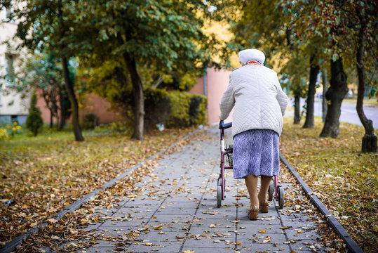 Elderly woman withe the walkier