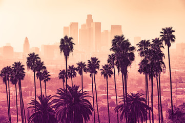 Los Angeles skyline with palm trees in the foreground Wall mural
