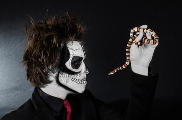 Zombie kiss royal snake