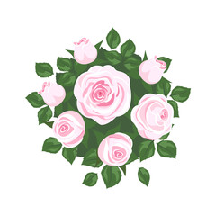 white and pink roses on white background. roses card