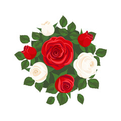 white roses and red roses on white background. roses card