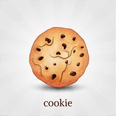 Chocolate cookie. Vector illustration