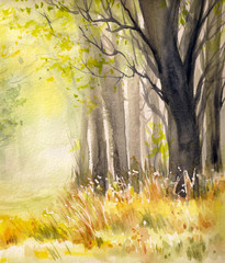 Trees in autumn forset.Picture created with watercolors.