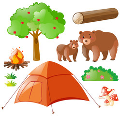 Bears and camping elements