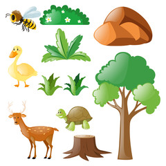 Nature set with animals and plants