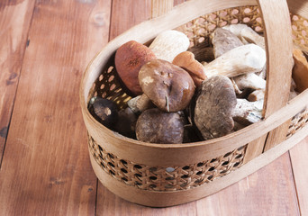 The basket with the collected mushrooms