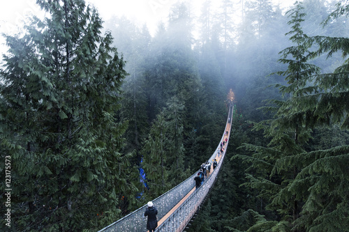 Fotomurales Capilano suspension bridge Vancouver, British Columbia Canada. Suspension bridge on a foggy and misty day. Bridge in the forest surrounded by nature.
