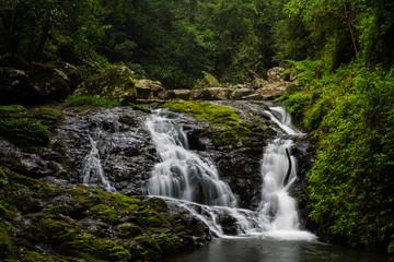 Gold Coast and Tweed Coast hinterland waterfalls