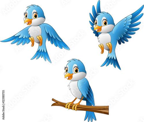 quot blue bird cartoon quot  stock image and royalty free vector folder clip art template folder clip art template