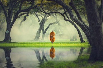 Monk hike in deep forest reflection with lake, Buddha Religion c