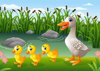 Cartoon duck family