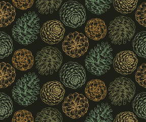 Seamless pattern with hand drawn pine cones.