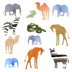 watercolor illustration picture set of animals elephant, camel, giraffe, zebra, crocodile, snake. transparent watercolor different shades.