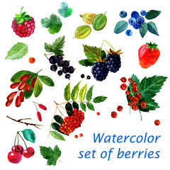 watercolor illustration of a set of different berries image. transparent watercolor different shades. Labels, background, card, pattern.