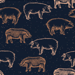 Pigs seamless pattern pig farm background