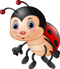 Cartoon funny ladybug