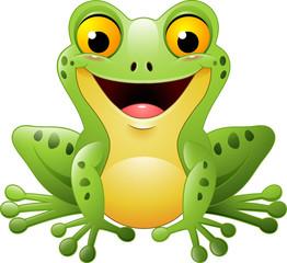Kenwood Frog