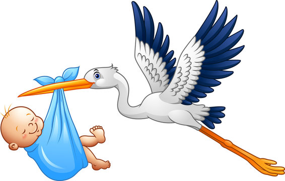 Cartoon stork with baby boy