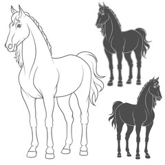 Set of vector illustrations with the horse. Isolated objects on white.
